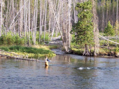 s-fishing