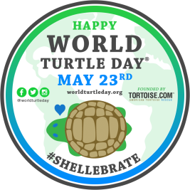 WorldTurtleDay badge